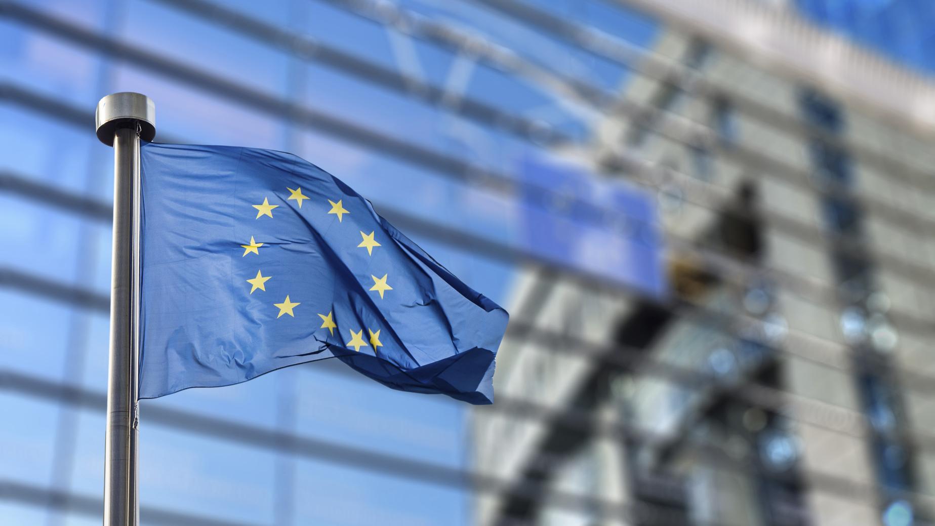4.2. Lignes directrices de l'Union européenne (UE)