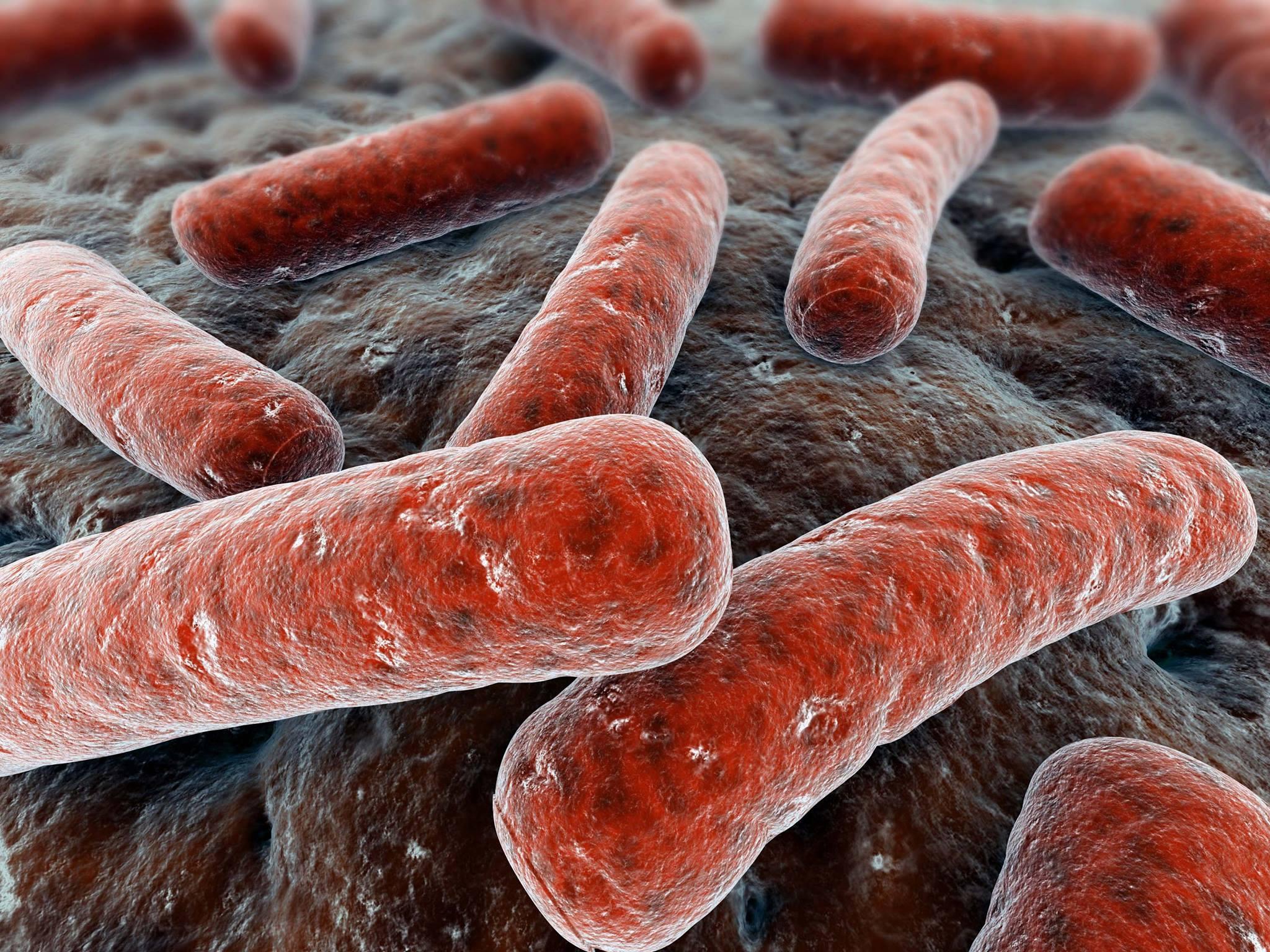 الإصابة بالسل و فيروس نقص المناعة البشرية أية علاقة ؟