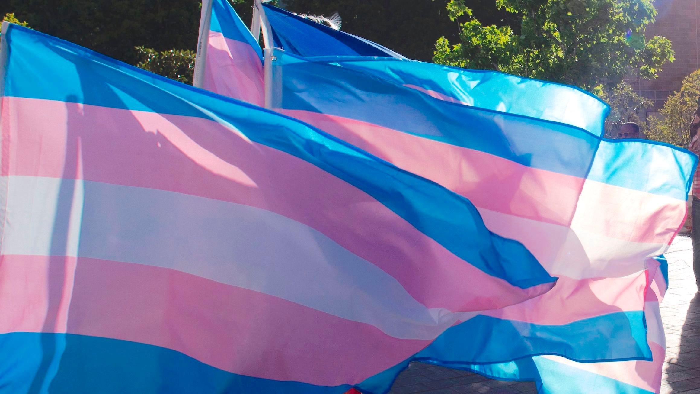 Транс*люди и союзники отмечают международный День видимости - изображение 1