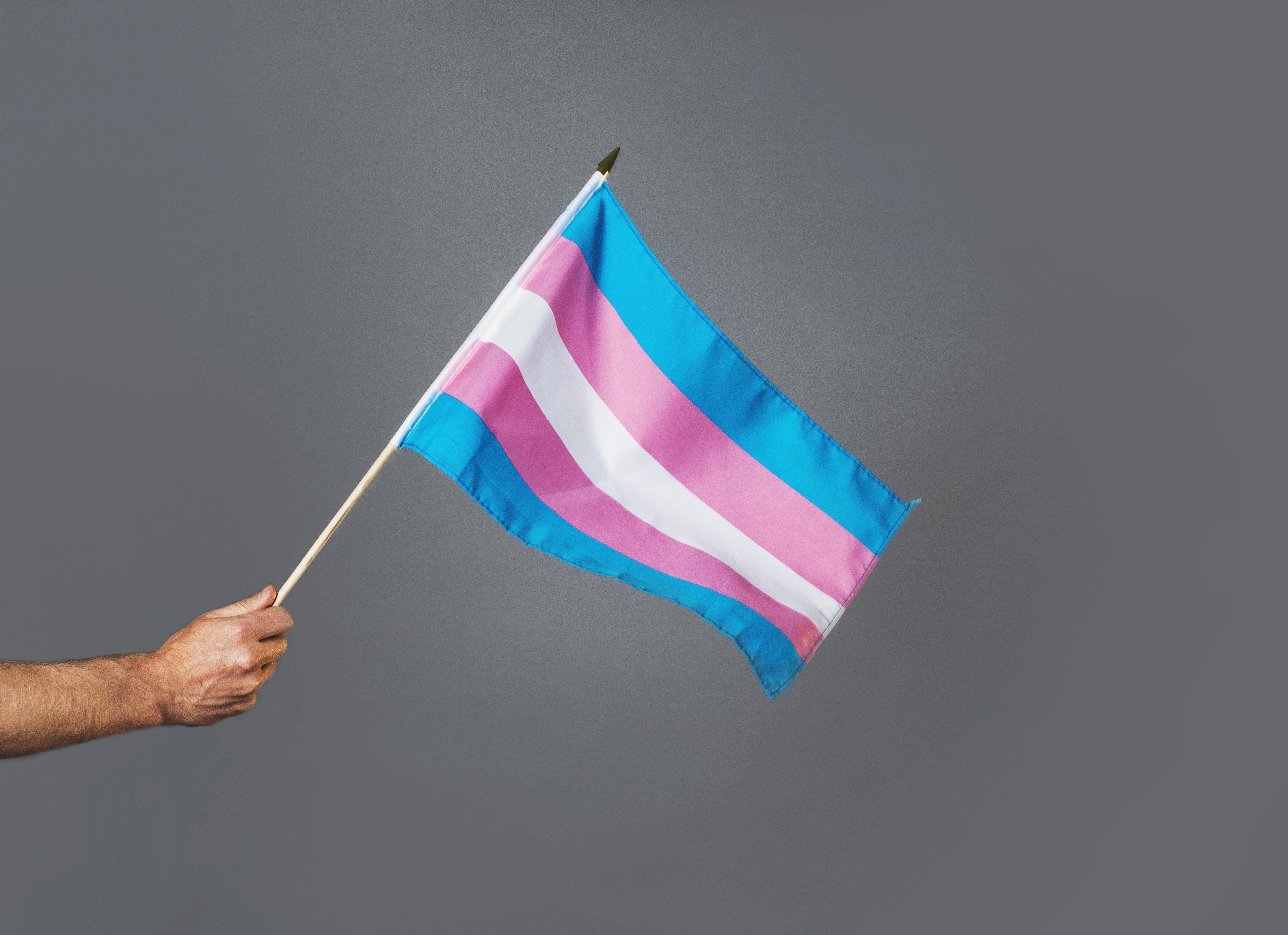 Транс*люди и союзники отмечают международный День видимости