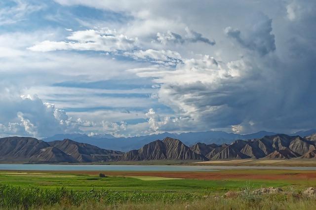 ITPCru: экспресс-тестов на базе НПО и самотестирования нет в законах Кыргызстана
