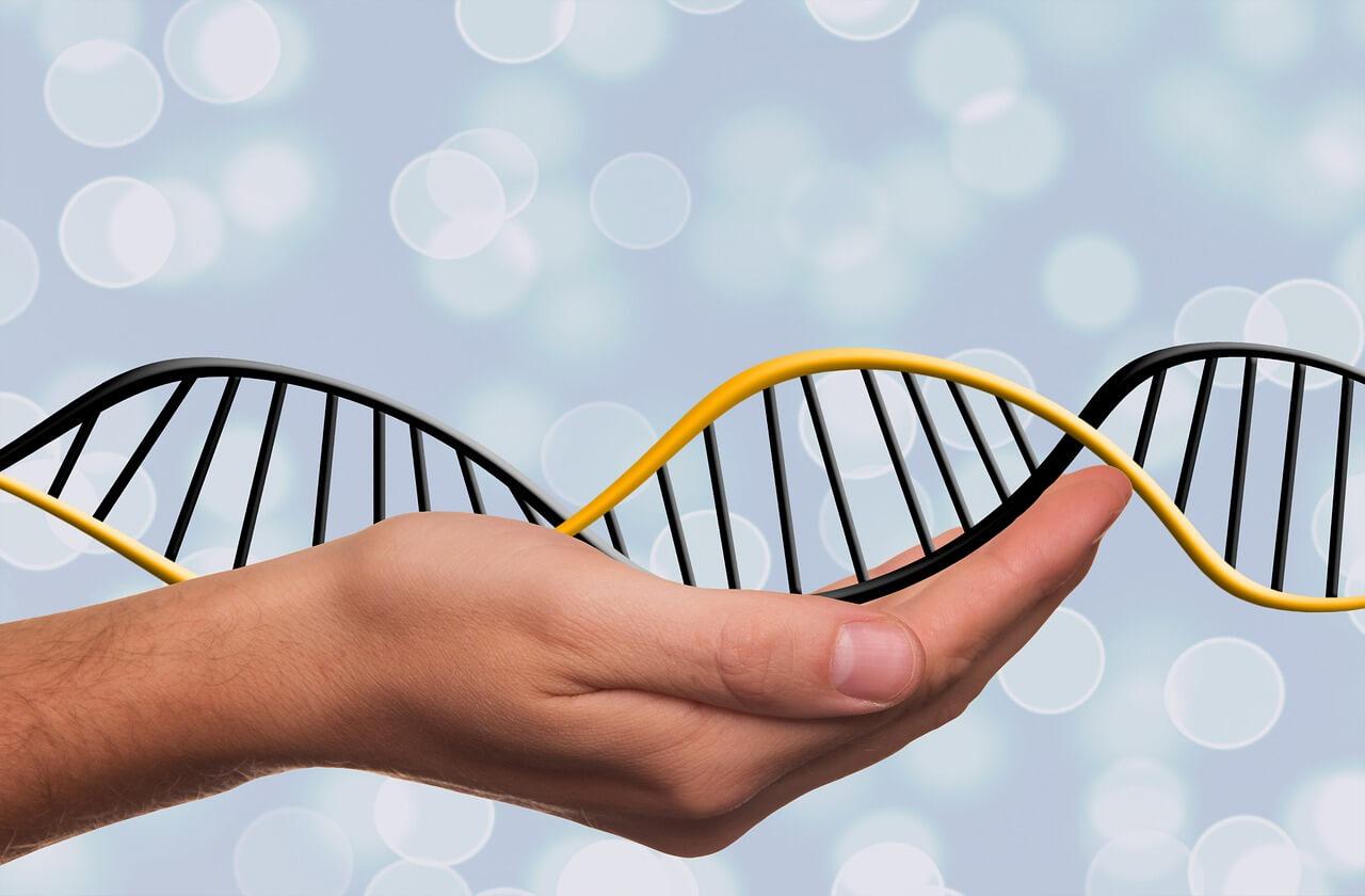 Способен ли COVID-19 изменить ДНК человека? - изображение 1