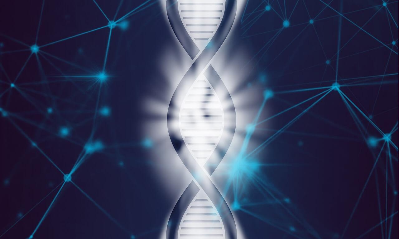 Генная терапия ВИЧ: запущен первый этап клинических испытаний на людях