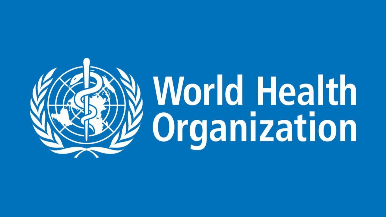 4.1. Рекомендации Всемирной организации здравоохранения (ВОЗ)