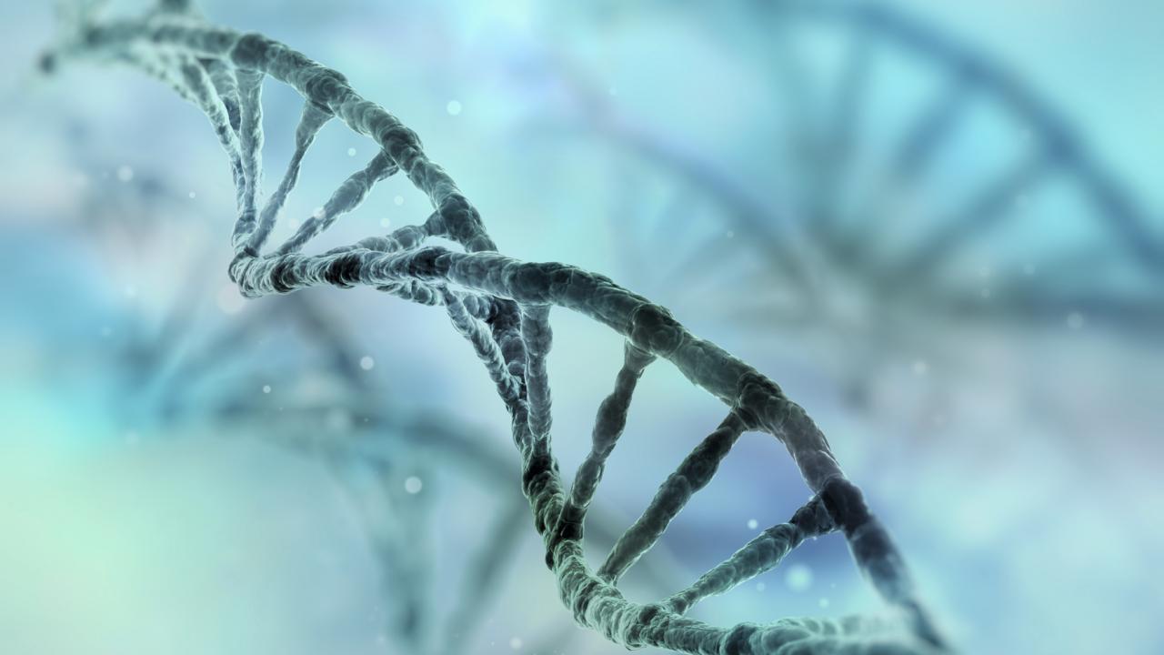 Ученые: Первые ретровирусы появились на Земле около 500 млн лет назад - изображение 1