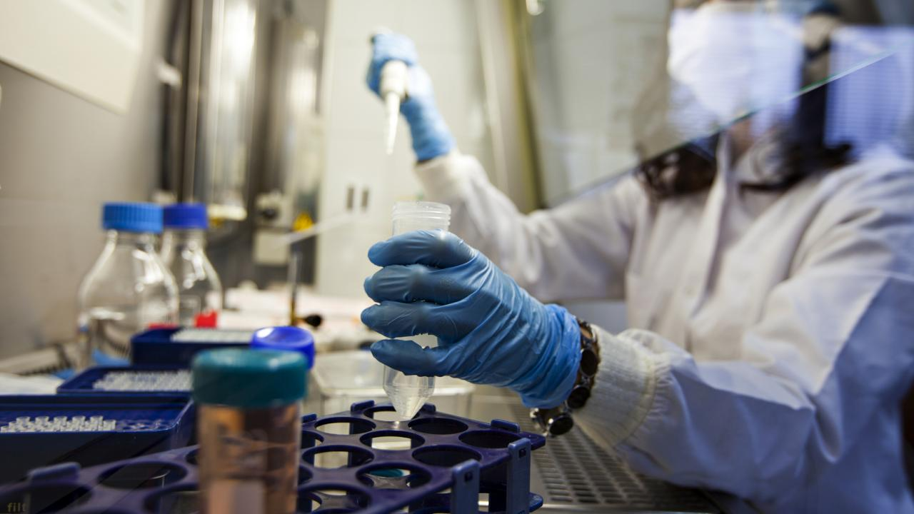 The Gates Foundation to fund $9m to a firm working on HIV cure
