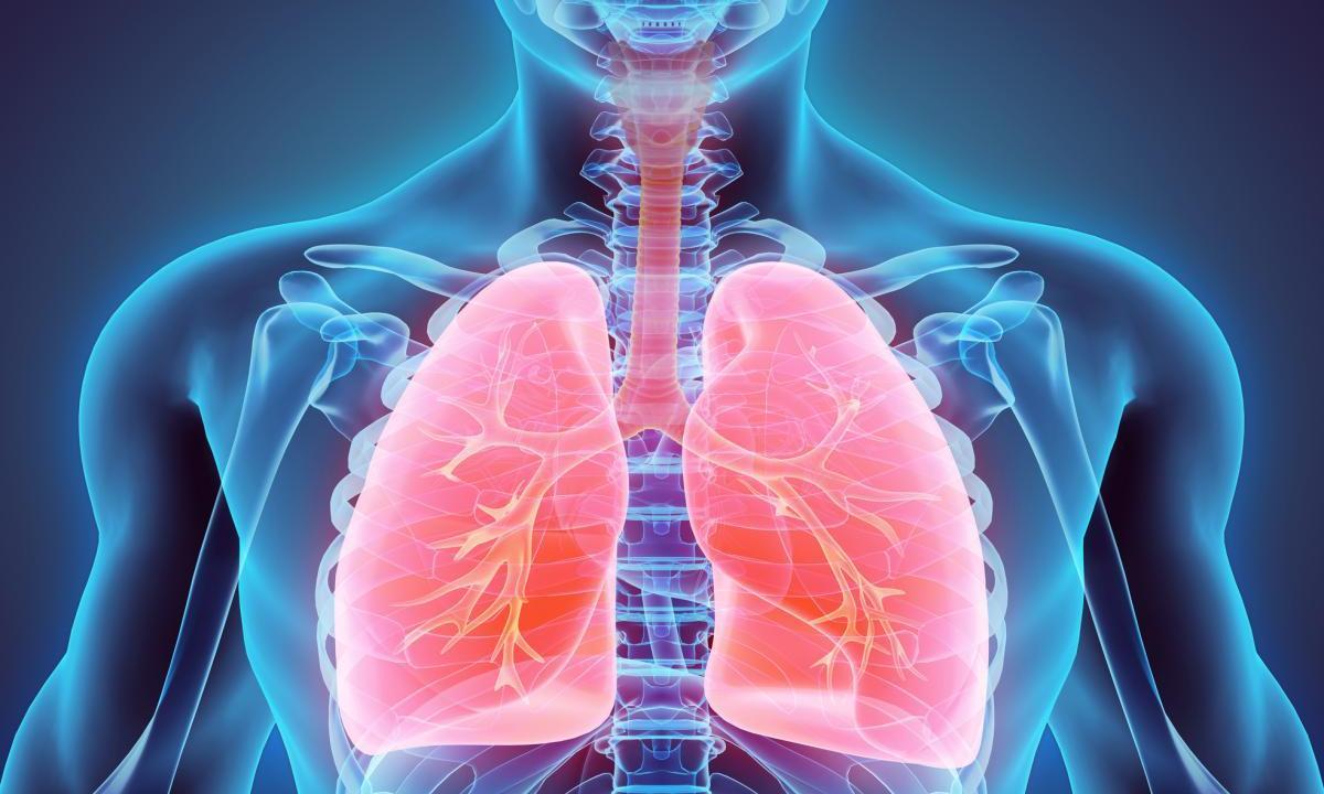 ВКазахстане в2,4 раза снизилась заболеваемость туберкулезом - изображение 1