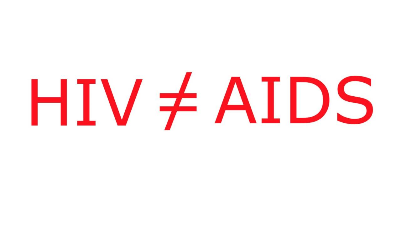HIV is not AIDS - foto 1