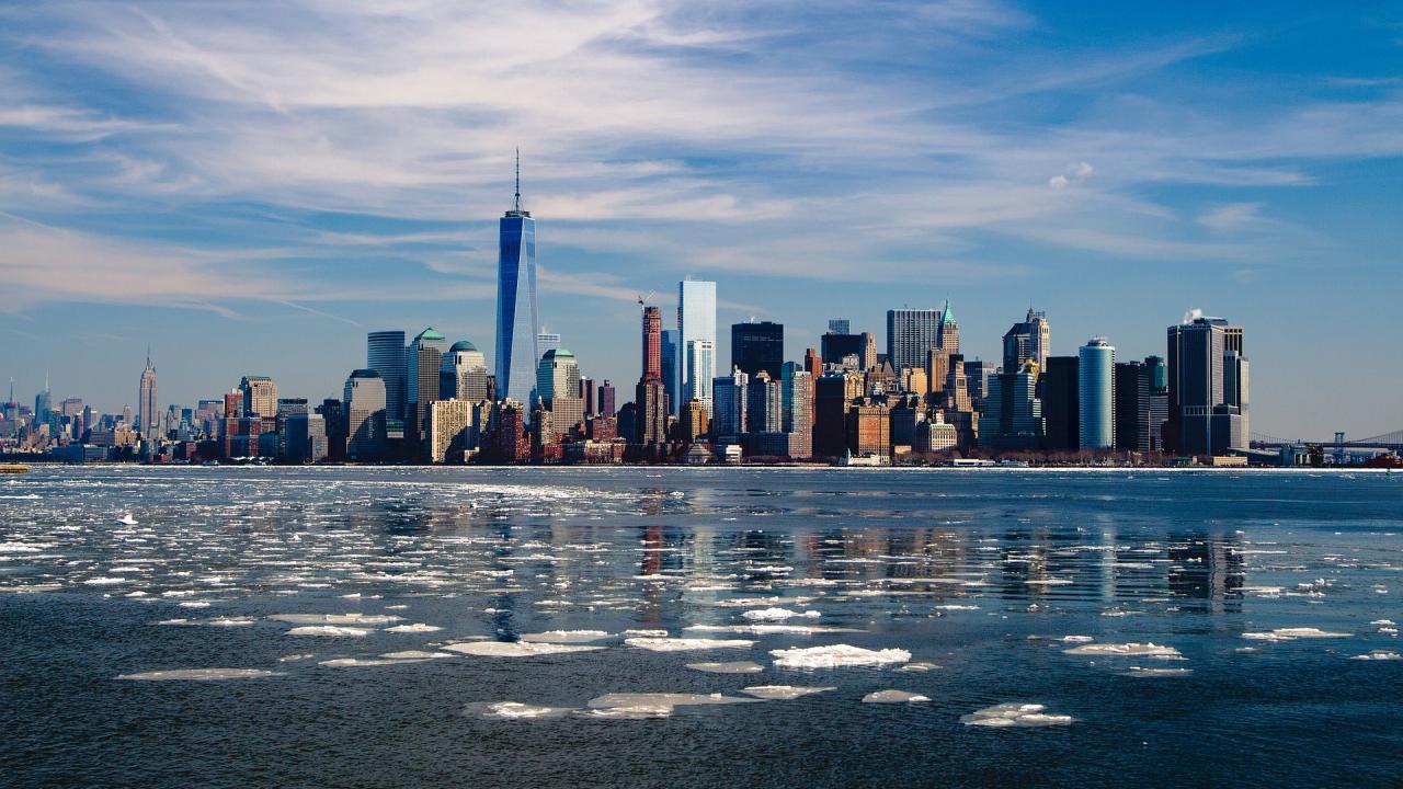 ВНью-Йорке стали в 10 раз чаще прописывать ДКП - изображение 1