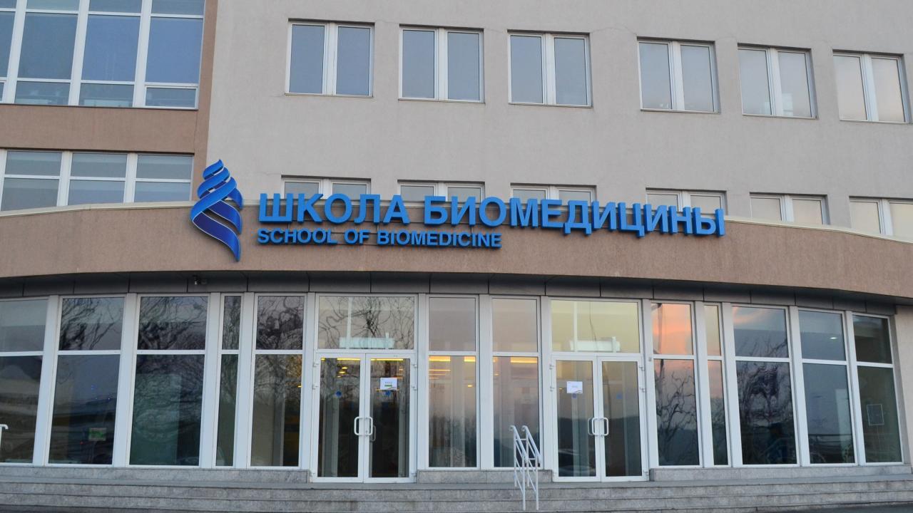 ВоВладивостоке создадут центр борьбы спандемическими угрозами вАзии - изображение 1