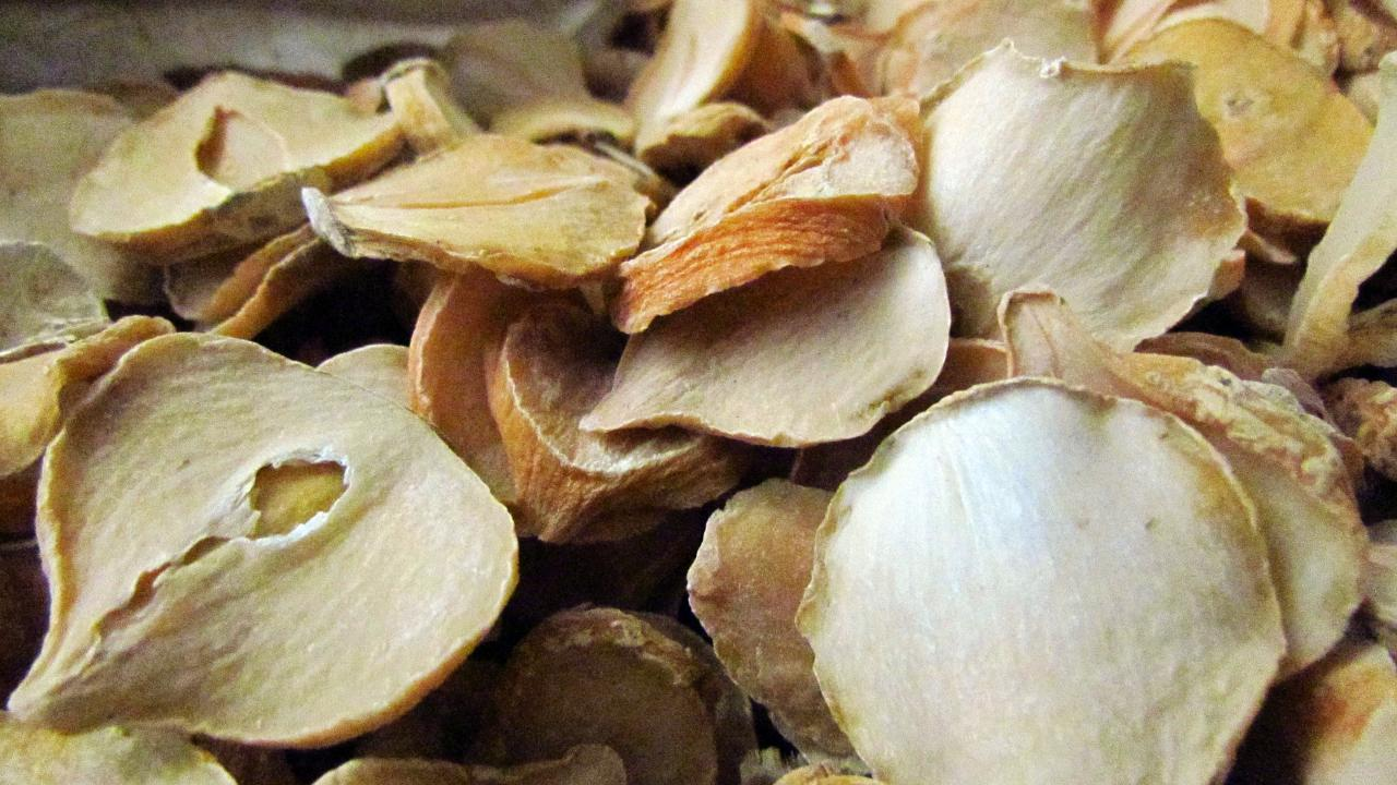 Persian shallot could help fight TB antibiotic resistance - picture 1
