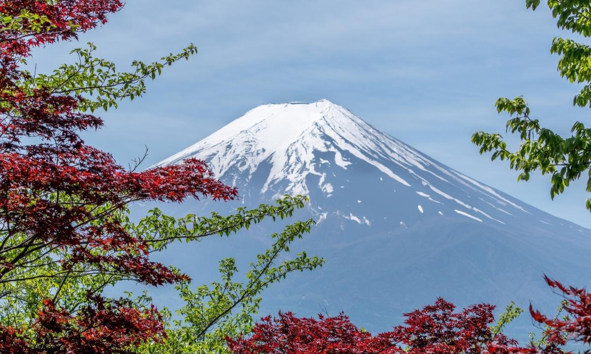 Япония будет требовать тест на туберкулез при получении долгосрочных виз - изображение 1
