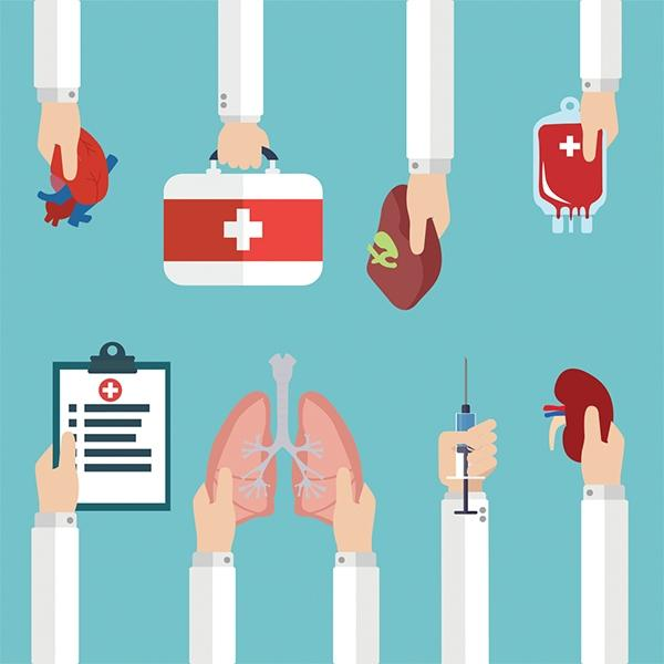 دراسة تتبث تدني خطورة العدوى المزدوجة خلال عمليات زرع الأعضاء بين متبرعين ومتلقين متعايشين مع فيروس نقص المناعة البشري