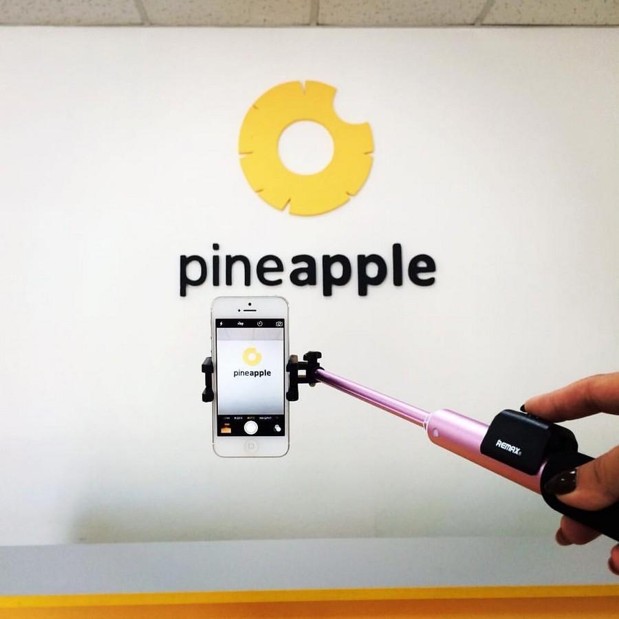 Pineapple - фото 14