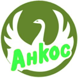 Анкос - фото