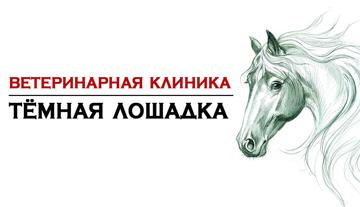 Темная лошадка - фото