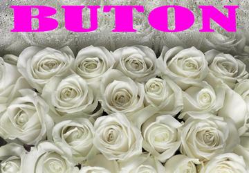 Buton - фото
