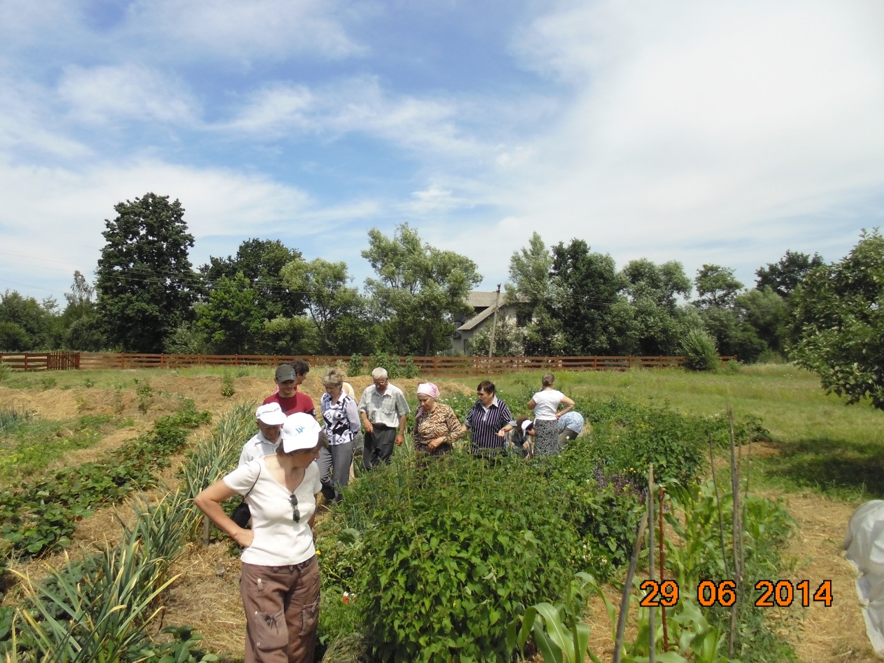 """Клуб природного землеробства і здорового способу життя """"Земледар"""" - фото 15"""