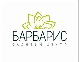Барбарис - фото