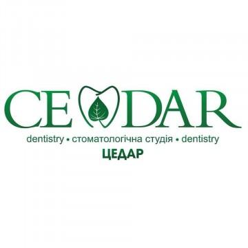CEDAR - фото