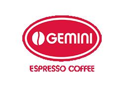 Gemini - фото