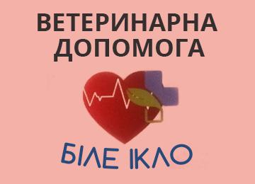 Біле ікло - фото