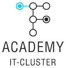 IT CLUSTER Academy - фото