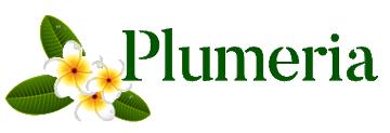 Plumeria - фото