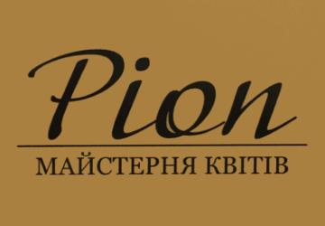Pion - фото