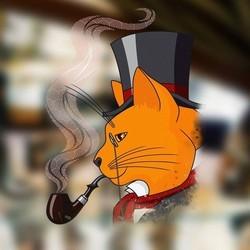 Рудий кіт - фото