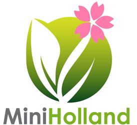 Mini Holland - фото