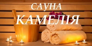Камелія - фото