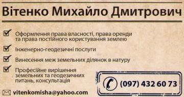 Вітенко Михайло Дмитрович - фото