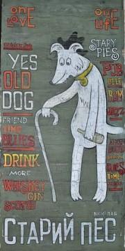 Старий пес - фото