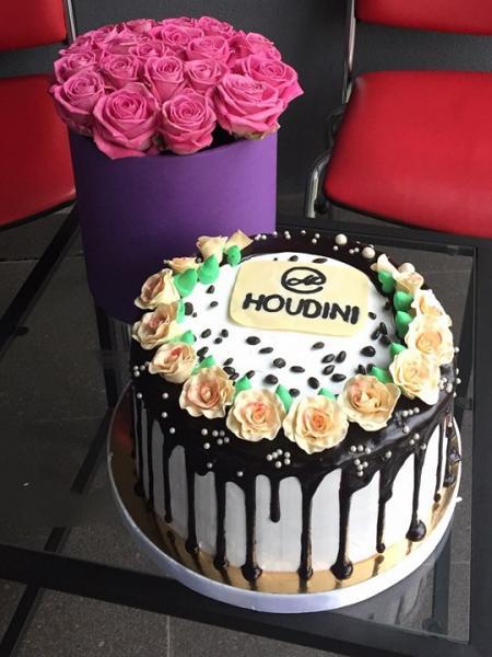 Houdini - фото 1