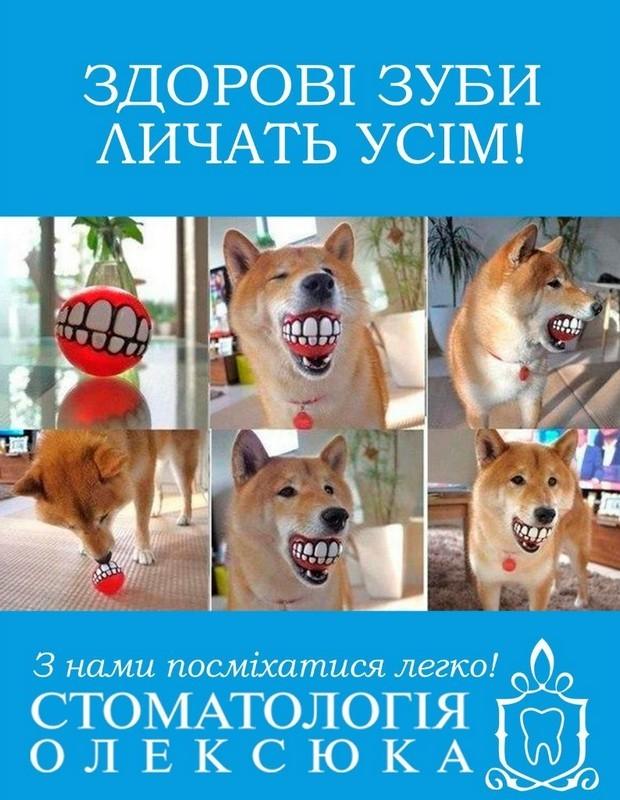 Стоматологія Олексюка - фото 1