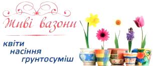 Квіти - фото