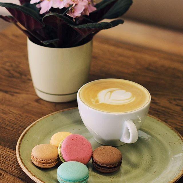 Gusto Coffee - фото 14