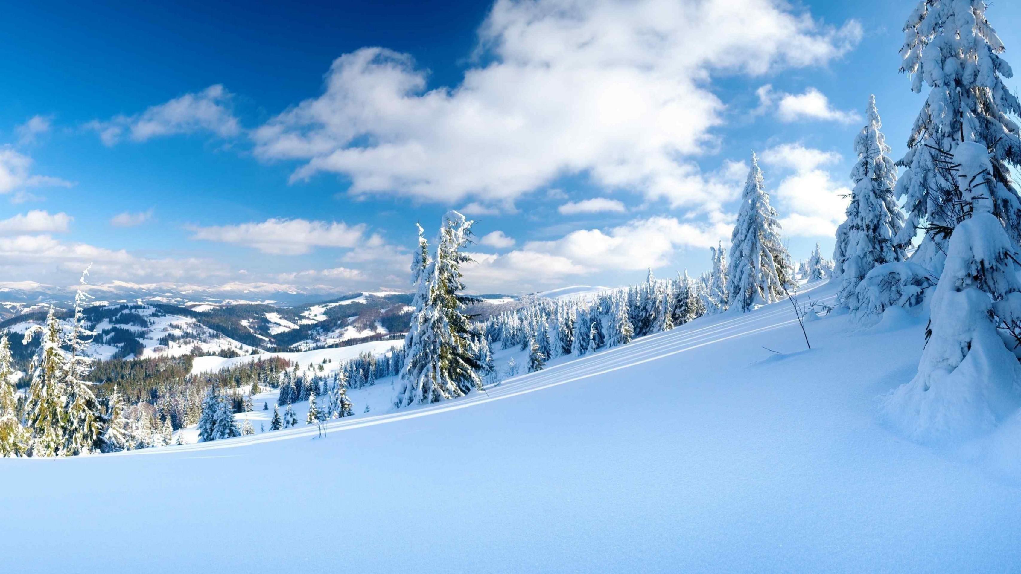 Скачать Снежные Обои