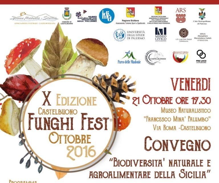 FUNGHI FEST  Castelbuono capitale del fungo