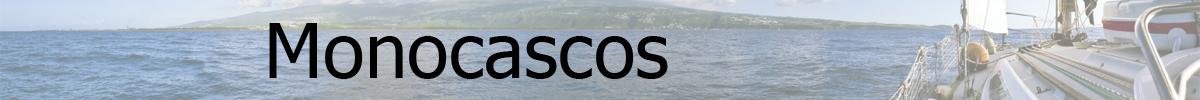Flota Monocasco