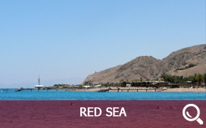 Boats and Catamarans renting in Red Sea
