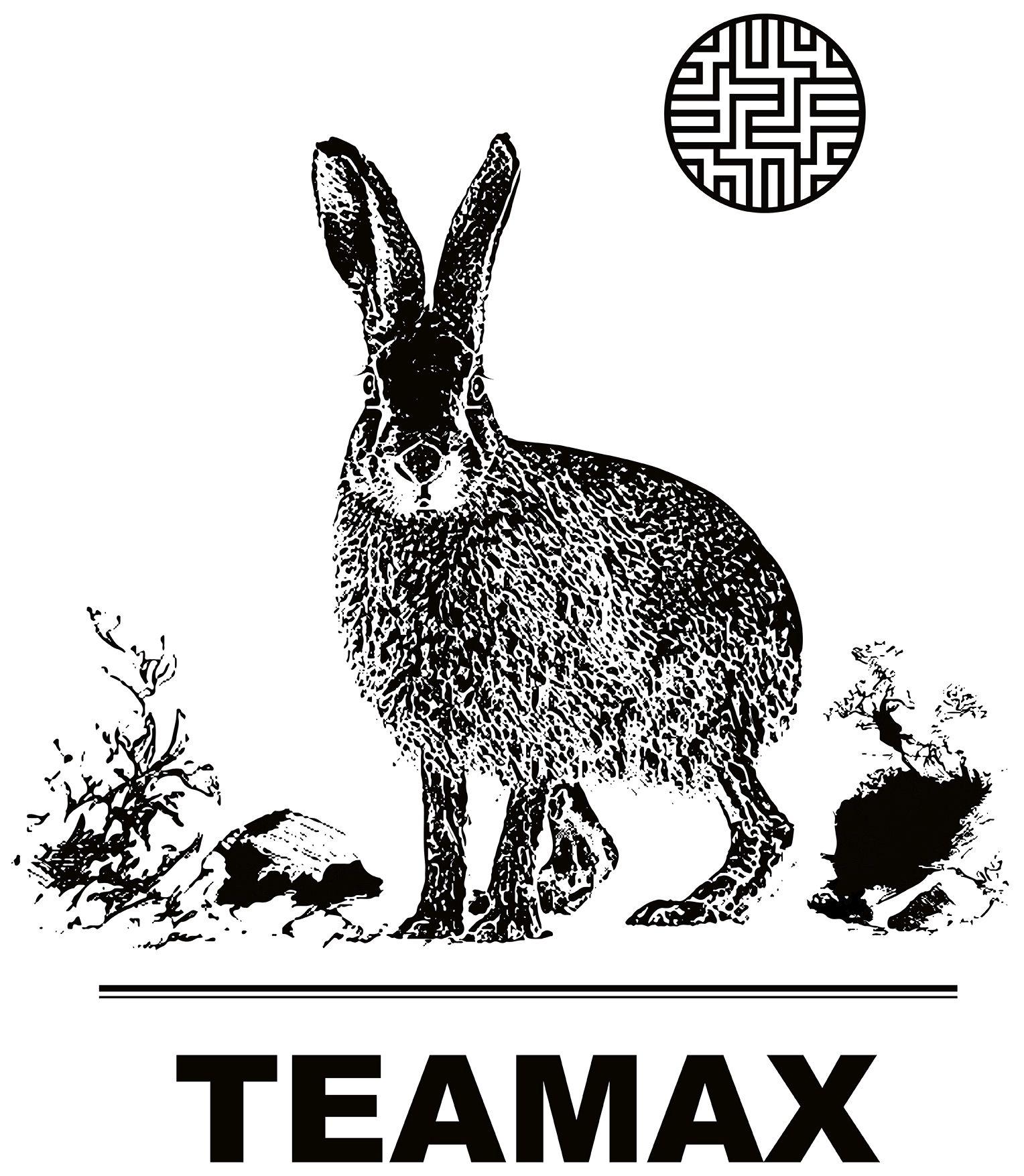 Wort-/Bildmarke: TEAMAX