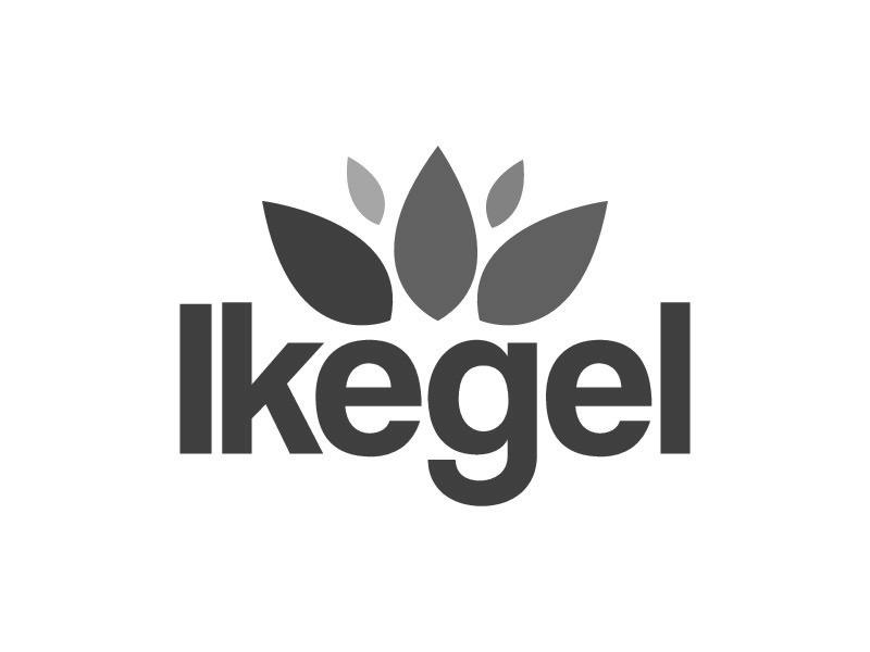 Bildmarke: Ikegel