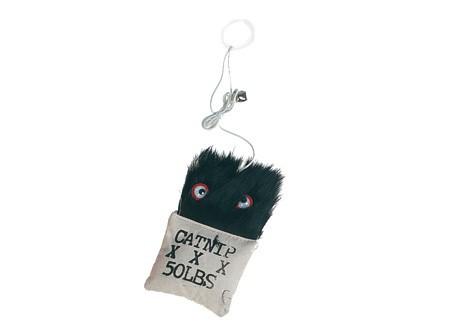 jouet qui fait peur miaoubox la box cadeau pour votre chat. Black Bedroom Furniture Sets. Home Design Ideas
