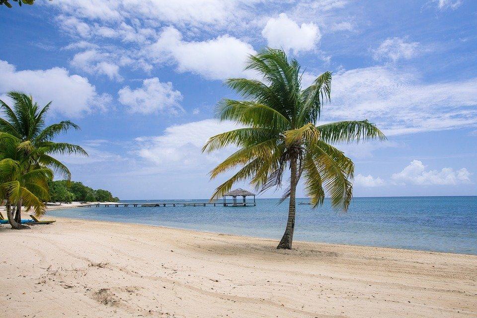 grand hotel sunny beach solnechnyj bereg