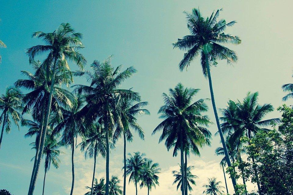 skol`ko stoit putevka v tailand na dvoikh