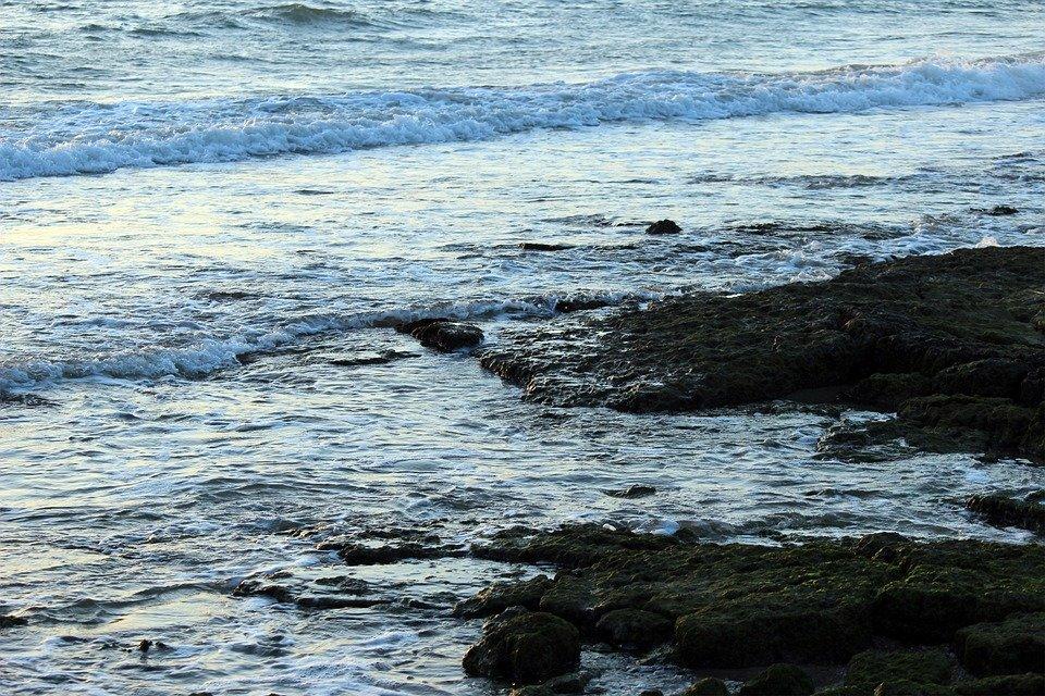shantarskie ostrova tury`