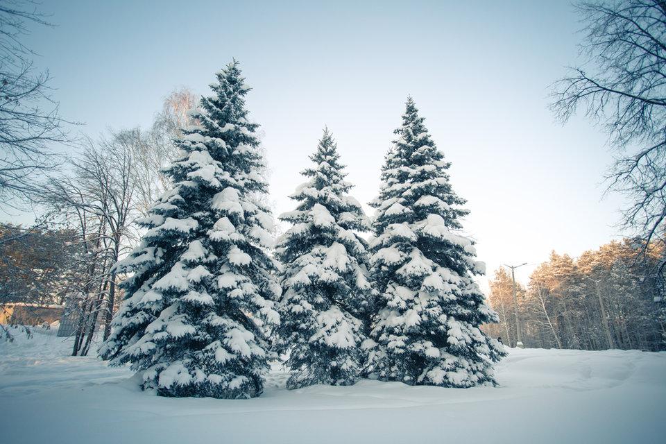 otdyh_sanatorii_zimoj