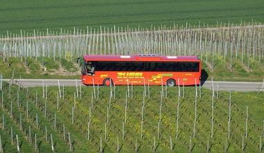 Avtobusnyj tur v abhaziju iz kazani 2016